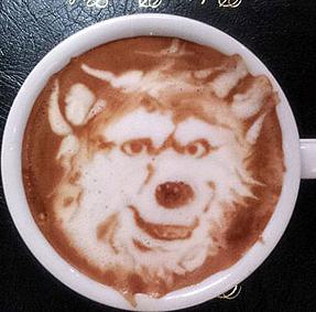 Cappuccino Hund